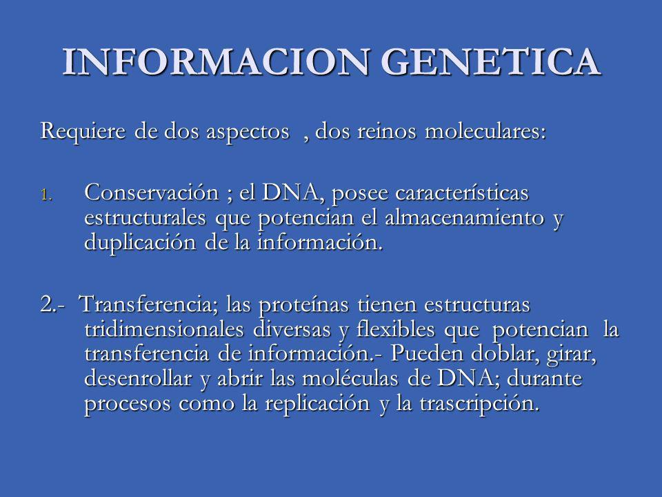 INFORMACION GENETICA Requiere de dos aspectos, dos reinos moleculares: 1. Conservación ; el DNA, posee características estructurales que potencian el