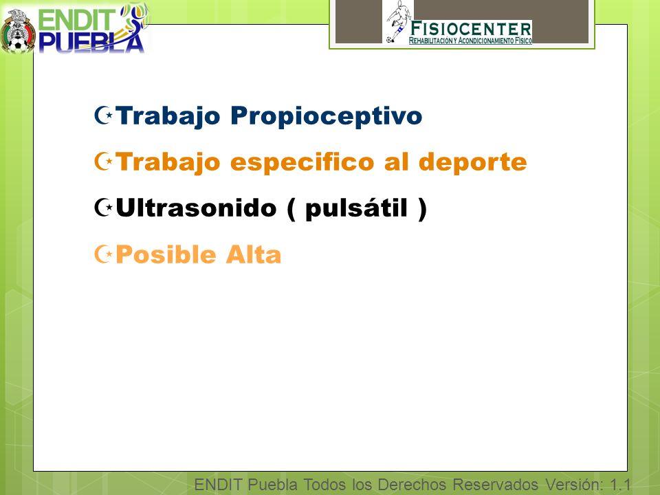 ENDIT Puebla Todos los Derechos Reservados Versión: 1.1 ZTrabajo Propioceptivo ZTrabajo especifico al deporte ZUltrasonido ( pulsátil ) ZPosible Alta