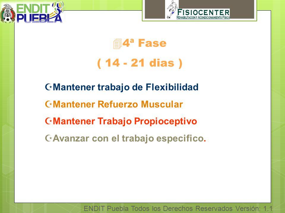 ENDIT Puebla Todos los Derechos Reservados Versión: 1.1 44ª Fase ( 14 - 21 dias ) ZMantener trabajo de Flexibilidad ZMantener Refuerzo Muscular ZMantener Trabajo Propioceptivo ZAvanzar con el trabajo especifico.