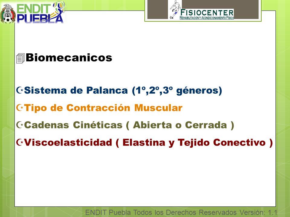 ENDIT Puebla Todos los Derechos Reservados Versión: 1.1 4Cicatrización Muscular ZPeritrauma ( 0-6 h ) - Hemorragia, retracción muscular, edema o derrame y dolor.