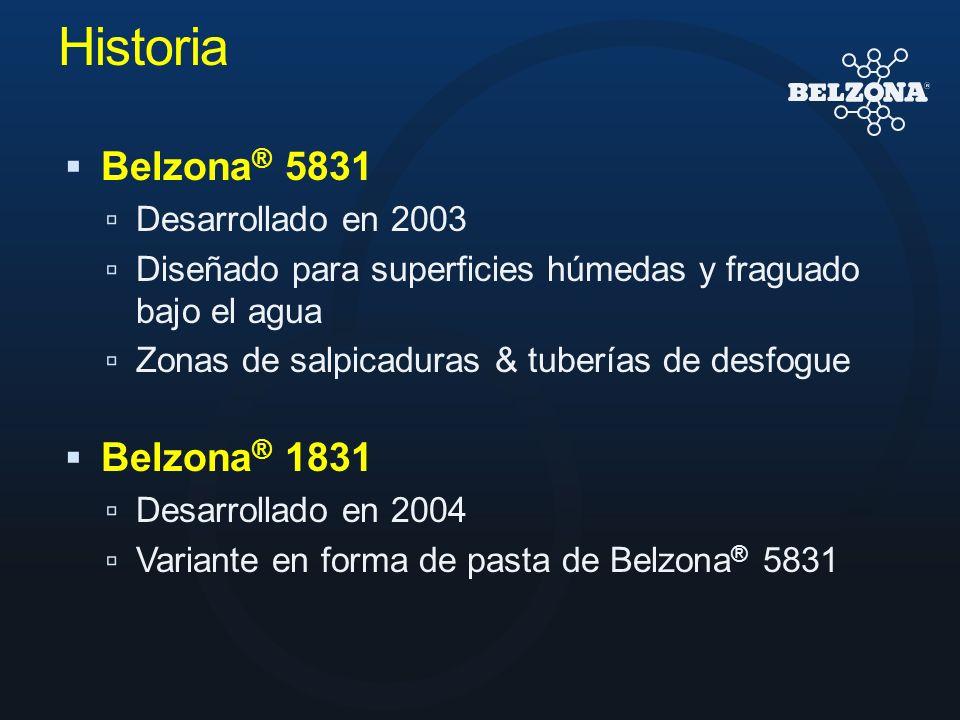 Historia Belzona ® 5831 Desarrollado en 2003 Diseñado para superficies húmedas y fraguado bajo el agua Zonas de salpicaduras & tuberías de desfogue Be