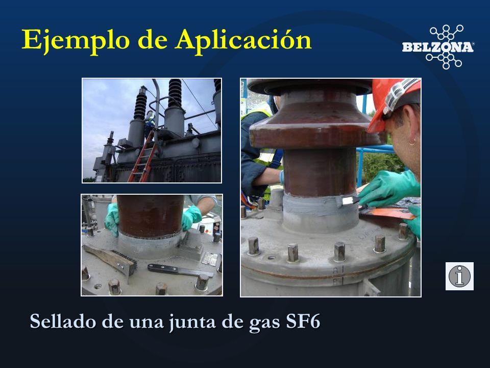 Sellado de una junta de gas SF6 Ejemplo de Aplicación