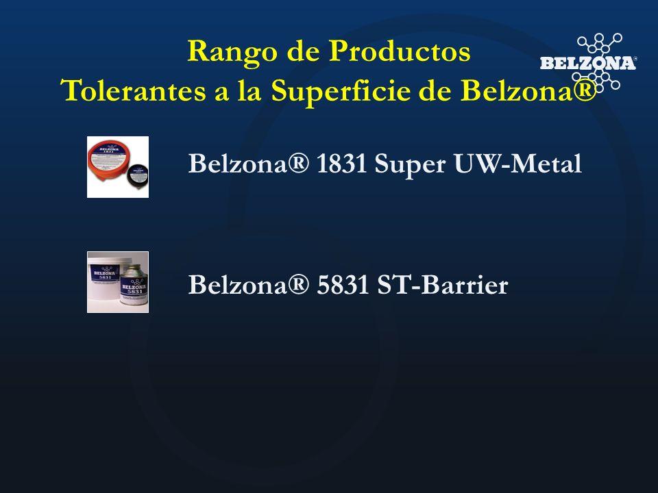 Rango de Productos Tolerantes a la Superficie de Belzona® Belzona® 1831 Super UW-Metal Belzona® 5831 ST-Barrier