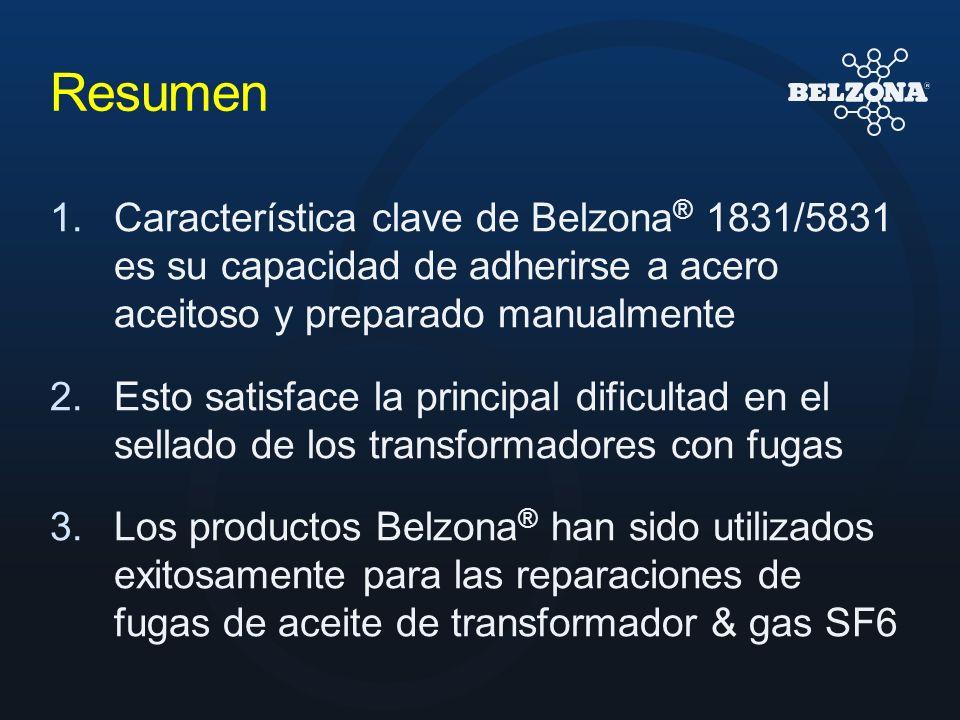 Resumen 1.Característica clave de Belzona ® 1831/5831 es su capacidad de adherirse a acero aceitoso y preparado manualmente 2.Esto satisface la princi