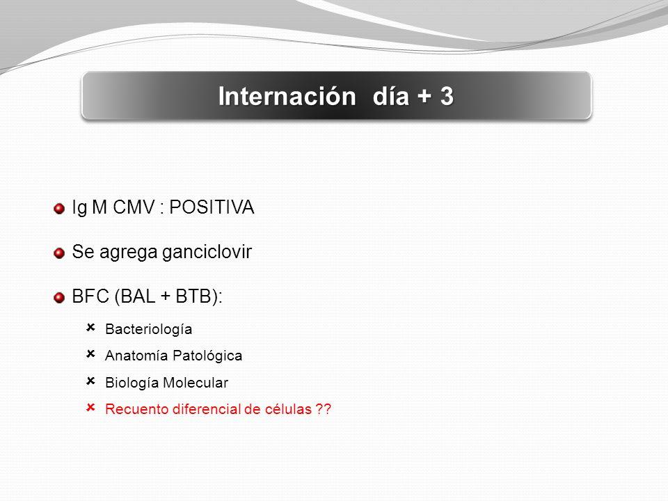Internación día + 3 Ig M CMV : POSITIVA Se agrega ganciclovir BFC (BAL + BTB): Bacteriología Anatomía Patológica Biología Molecular Recuento diferenci