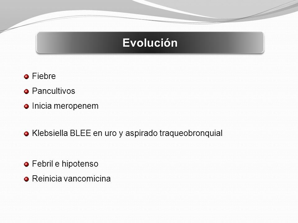 EvoluciónEvolución Fiebre Pancultivos Inicia meropenem Klebsiella BLEE en uro y aspirado traqueobronquial Febril e hipotenso Reinicia vancomicina