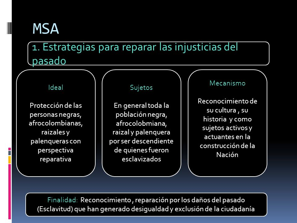 MSA 1. Estrategias para reparar las injusticias del pasado Ideal Protección de las personas negras, afrocolombianas, raizales y palenqueras con perspe