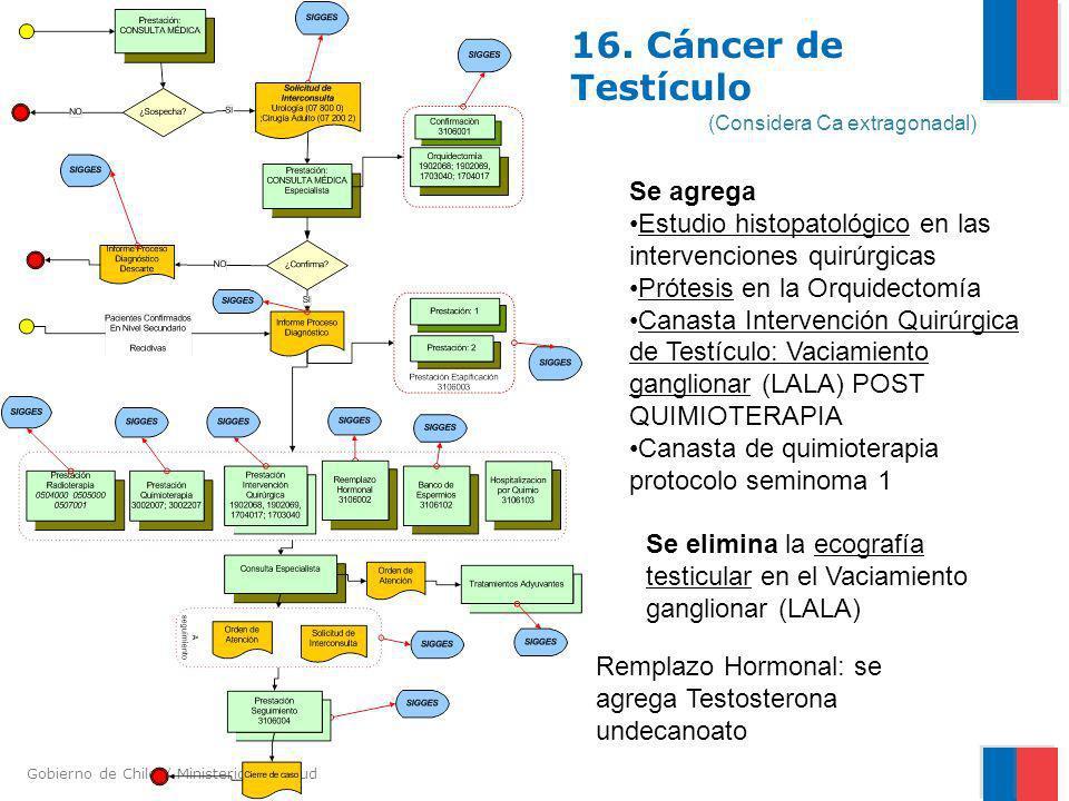 Gobierno de Chile / Ministerio de Salud 16. Cáncer de Testículo (Considera Ca extragonadal) Se agrega Estudio histopatológico en las intervenciones qu
