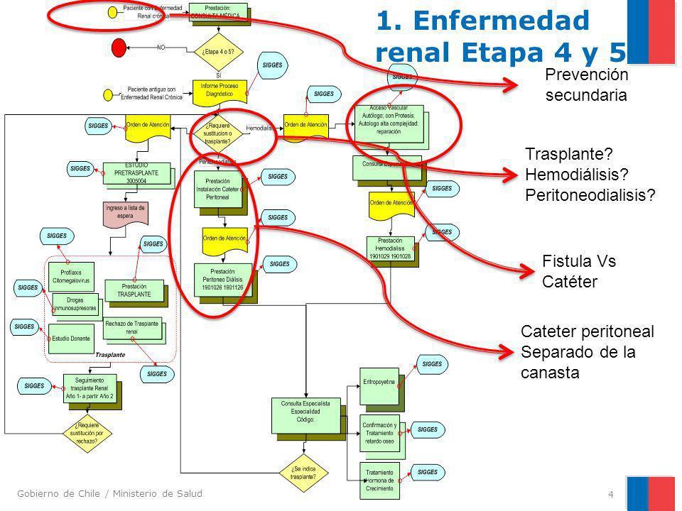 Gobierno de Chile / Ministerio de Salud 4 Prevención secundaria Trasplante? Hemodiálisis? Peritoneodialisis? Fistula Vs Catéter Cateter peritoneal Sep