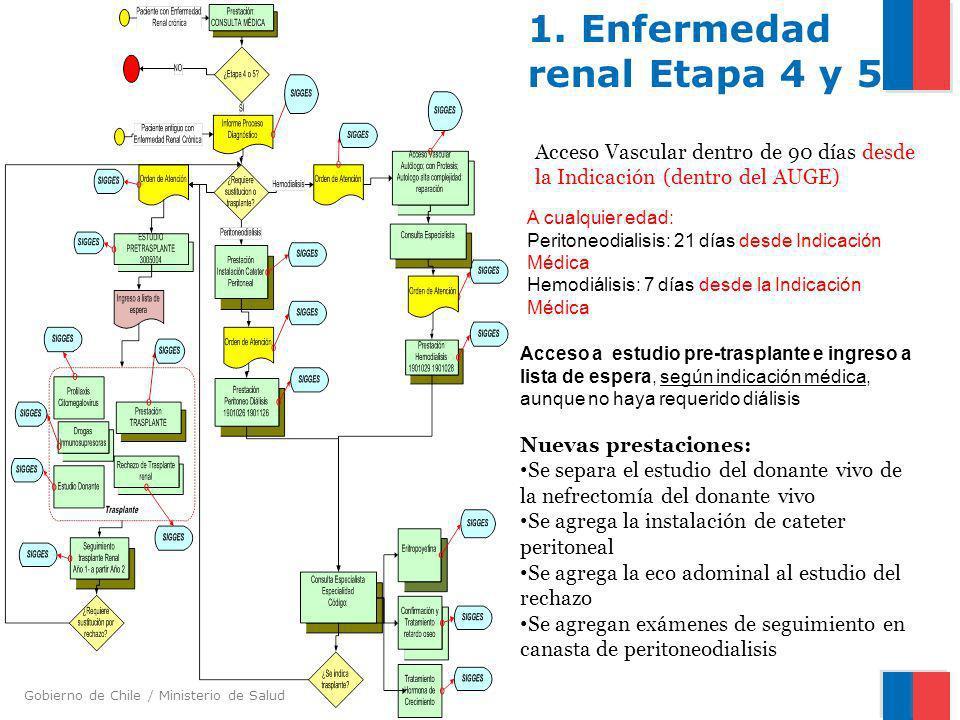 Gobierno de Chile / Ministerio de Salud 1. Enfermedad renal Etapa 4 y 5 Acceso Vascular dentro de 90 días desde la Indicación (dentro del AUGE) Nuevas