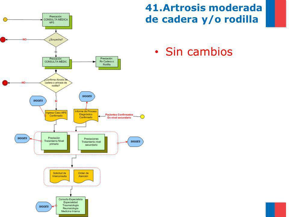 Gobierno de Chile / Ministerio de Salud 41.Artrosis moderada de cadera y/o rodilla Sin cambios