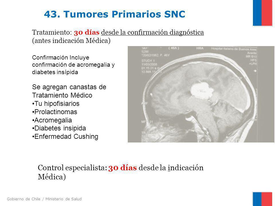 Gobierno de Chile / Ministerio de Salud 43. Tumores Primarios SNC Tratamiento: 30 días desde la confirmación diagnóstica (antes indicación Médica) Con
