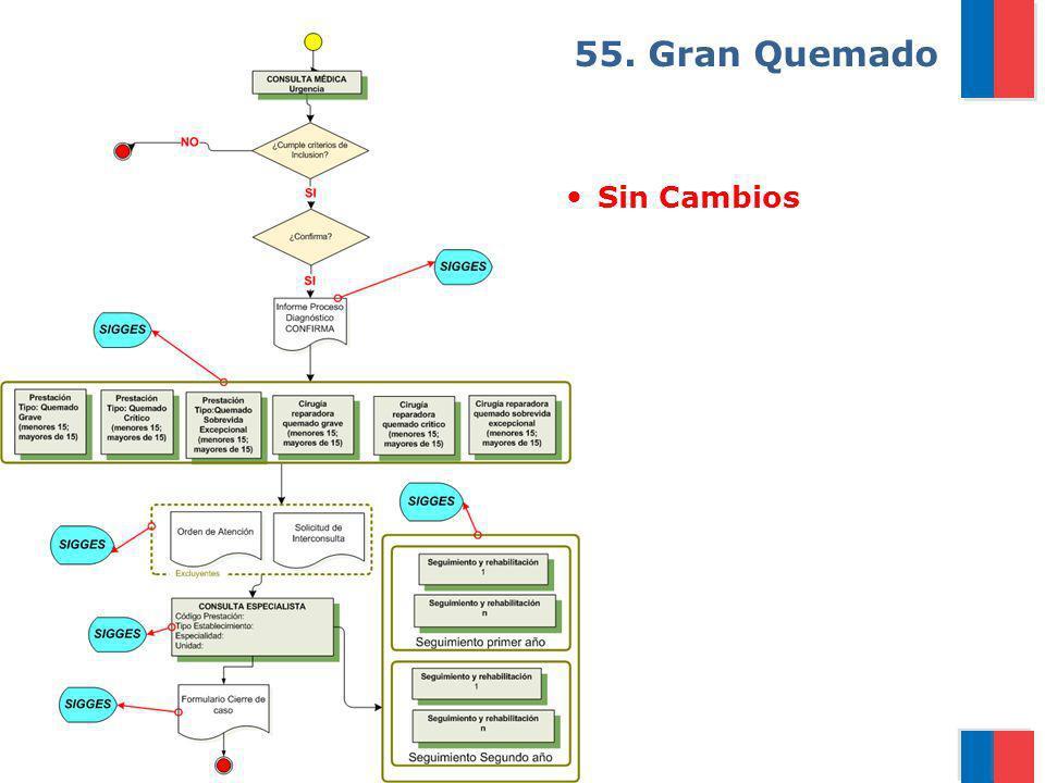 Gobierno de Chile / Ministerio de Salud 55. Gran Quemado Sin Cambios