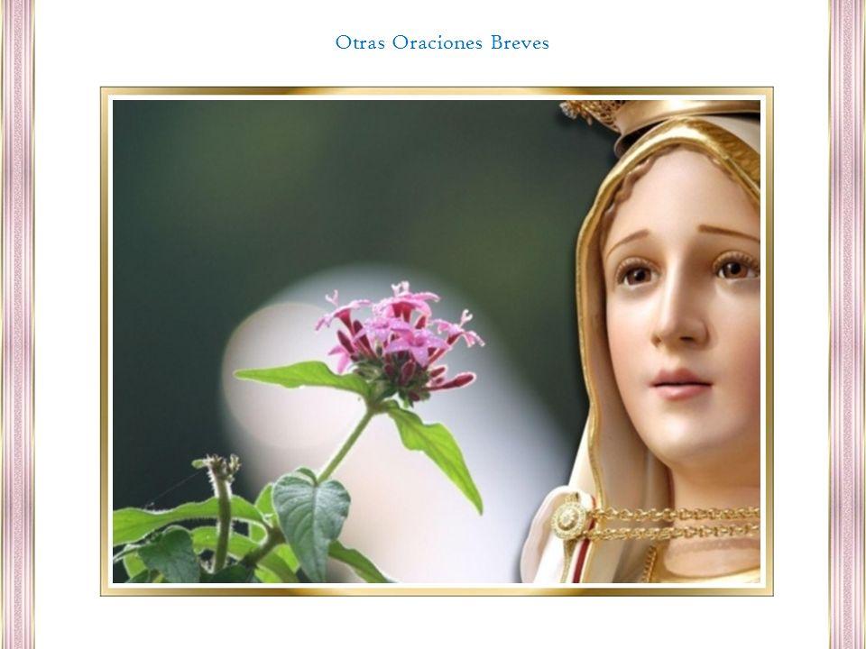 Oh Virgen Santísima, Vos os aparecisteis repetidas veces a los niños; yo también quisiera veros, oír vuestra voz y deciros: Madre mía, llevadme al Cielo.