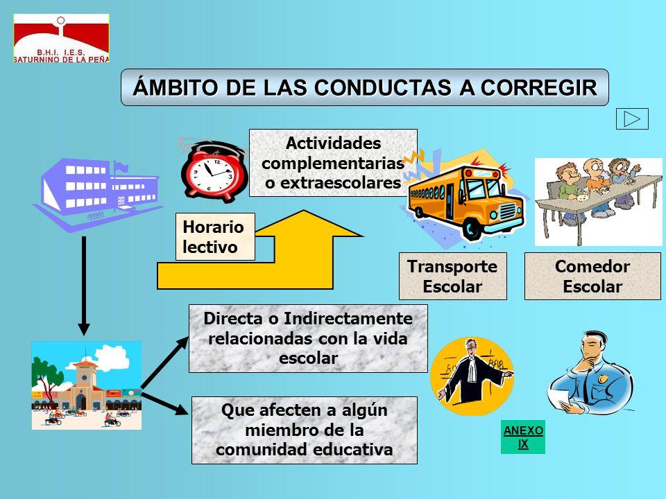 Actividades complementarias o extraescolares Horario lectivo Transporte Escolar Comedor Escolar Directa o Indirectamente relacionadas con la vida esco