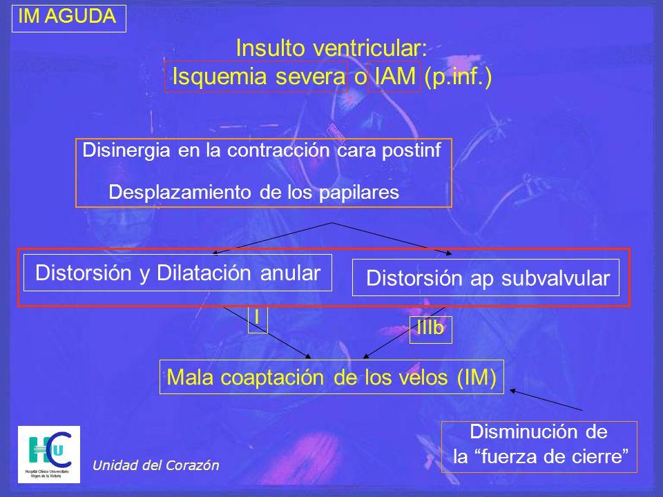 Unidad del Corazón Disminución de la fuerza de cierre Distorsión y Dilatación anular Distorsión ap subvalvular Insulto ventricular: Isquemia severa o
