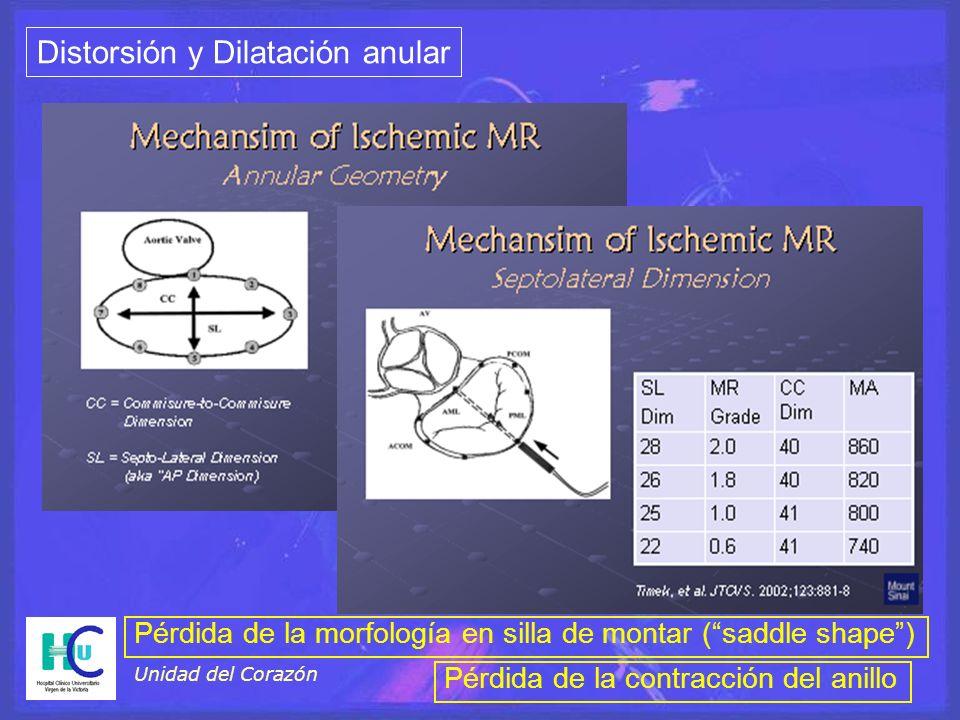 Unidad del Corazón Distorsión y Dilatación anular Pérdida de la morfología en silla de montar (saddle shape) Pérdida de la contracción del anillo