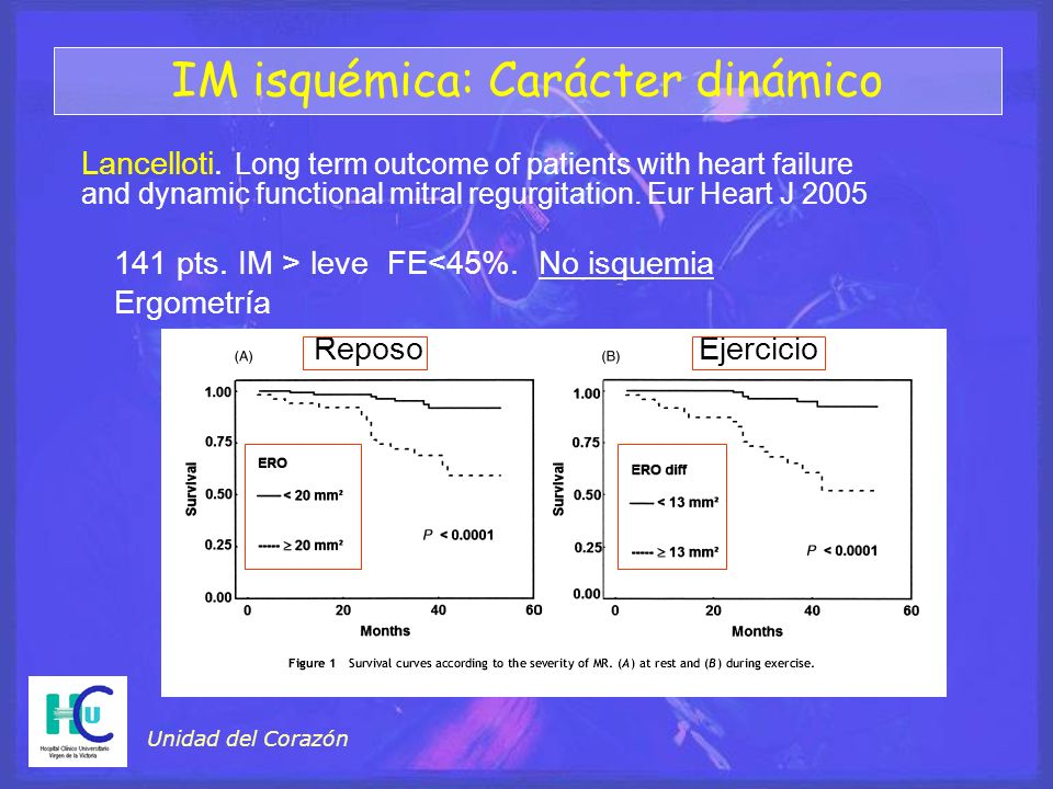 Unidad del Corazón ReposoEjercicio Lancelloti. Long term outcome of patients with heart failure and dynamic functional mitral regurgitation. Eur Heart