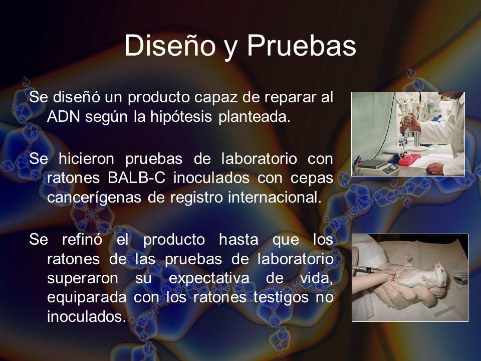 Diseño y Pruebas Se diseñó un producto capaz de reparar al ADN según la hipótesis planteada. Se hicieron pruebas de laboratorio con ratones BALB-C ino