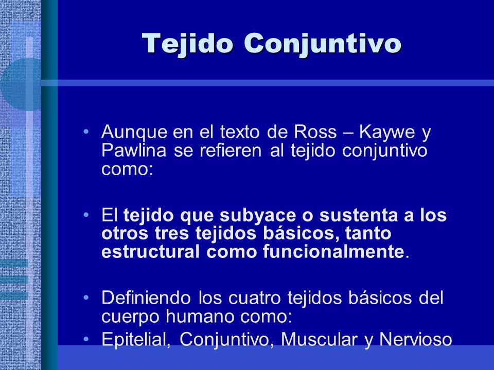 Tejido Conjuntivo Aunque en el texto de Ross – Kaywe y Pawlina se refieren al tejido conjuntivo como: El tejido que subyace o sustenta a los otros tres tejidos básicos, tanto estructural como funcionalmente.