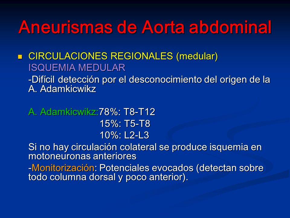 Aneurismas de Aorta abdominal CIRCULACIONES REGIONALES (medular) CIRCULACIONES REGIONALES (medular) ISQUEMIA MEDULAR -Difícil detección por el desconocimiento del origen de la A.