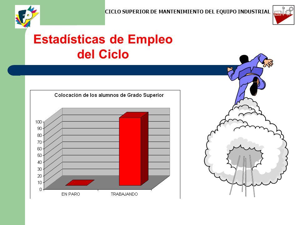 Estadísticas de Empleo del Ciclo CICLO SUPERIOR DE MANTENIMIENTO DEL EQUIPO INDUSTRIAL