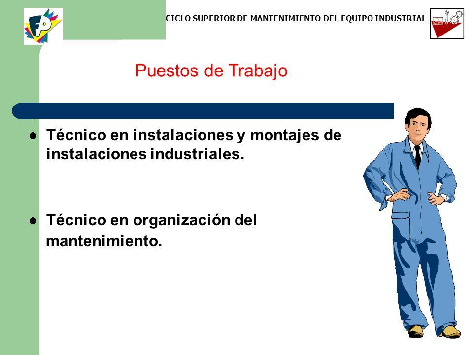 Puestos de Trabajo Técnico en instalaciones y montajes de instalaciones industriales. Técnico en organización del mantenimiento. CICLO SUPERIOR DE MAN