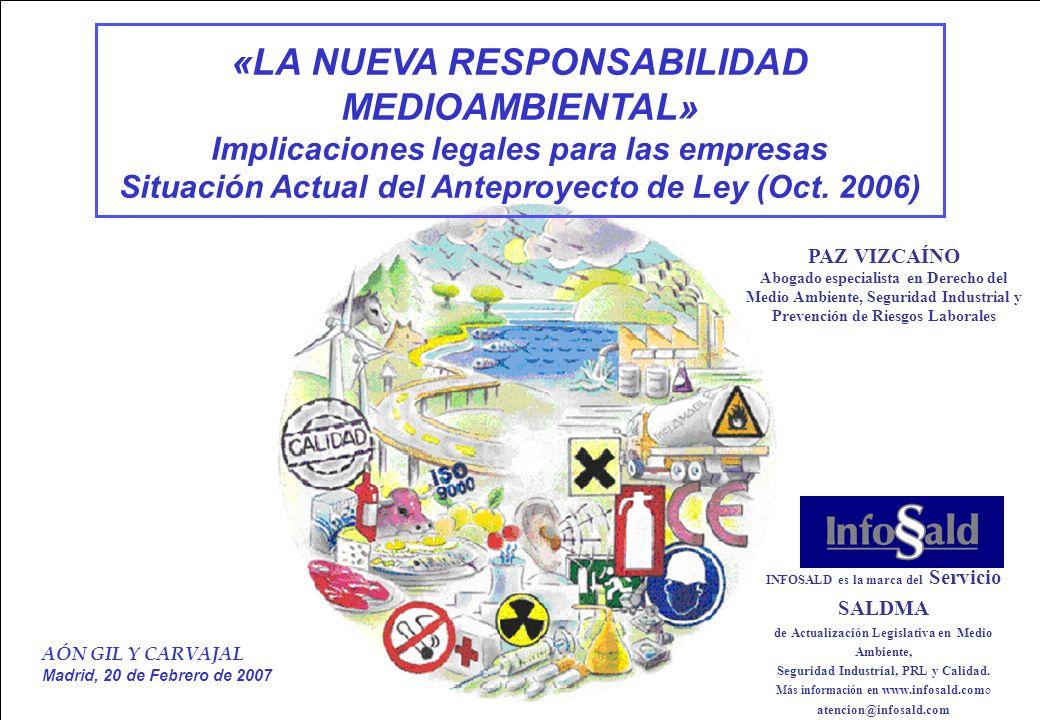 www.infosald.co m Despacho PAZ VIZCAINO Abogados 1/40 AÓN GIL Y CARVAJAL Madrid, 20 de Febrero de 2007 «LA NUEVA RESPONSABILIDAD MEDIOAMBIENTAL» Implicaciones legales para las empresas Situación Actual del Anteproyecto de Ley (Oct.
