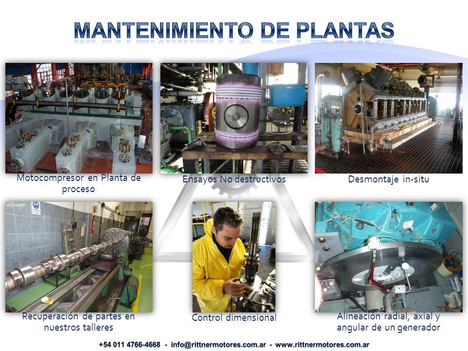 Motocompresor en Planta de proceso Ensayos No destructivos Desmontaje in-situ Recuperación de partes en nuestros talleres Control dimensional Alineación radial, axial y angular de un generador