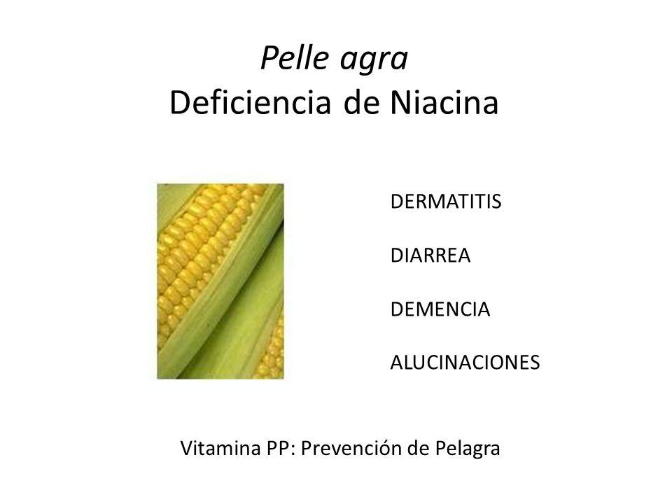 Pelle agra Deficiencia de Niacina DERMATITIS DIARREA DEMENCIA ALUCINACIONES Vitamina PP: Prevención de Pelagra