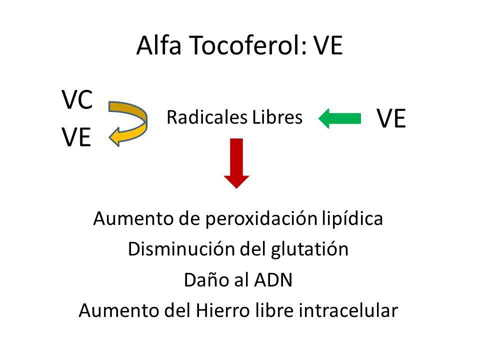 Aumento de peroxidación lipídica Disminución del glutatión Daño al ADN Aumento del Hierro libre intracelular Alfa Tocoferol: VE Radicales Libres VE VC VE