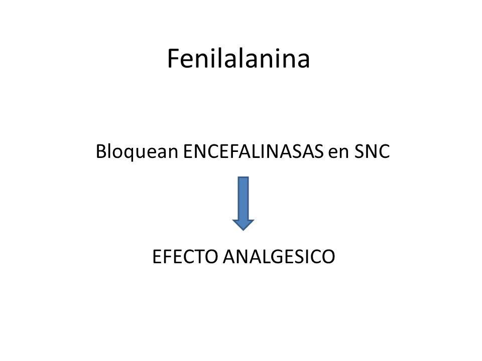 Bloquean ENCEFALINASAS en SNC EFECTO ANALGESICO