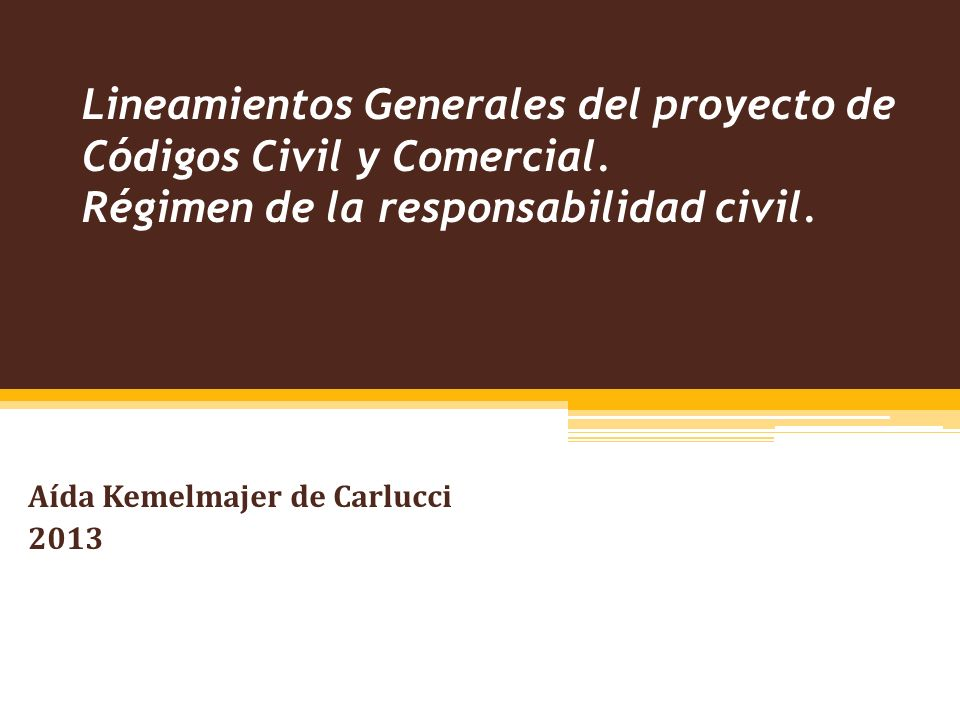 Lineamientos Generales del proyecto de Códigos Civil y Comercial.