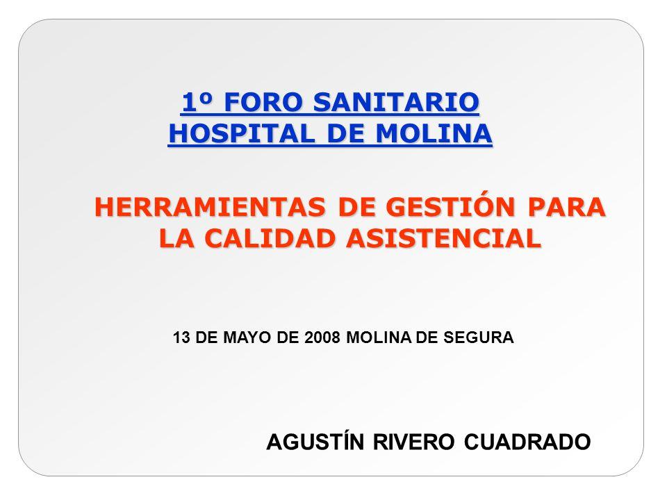 HERRAMIENTAS DE GESTIÓN PARA LA CALIDAD ASISTENCIAL 1º FORO SANITARIO HOSPITAL DE MOLINA 13 DE MAYO DE 2008 MOLINA DE SEGURA AGUSTÍN RIVERO CUADRADO