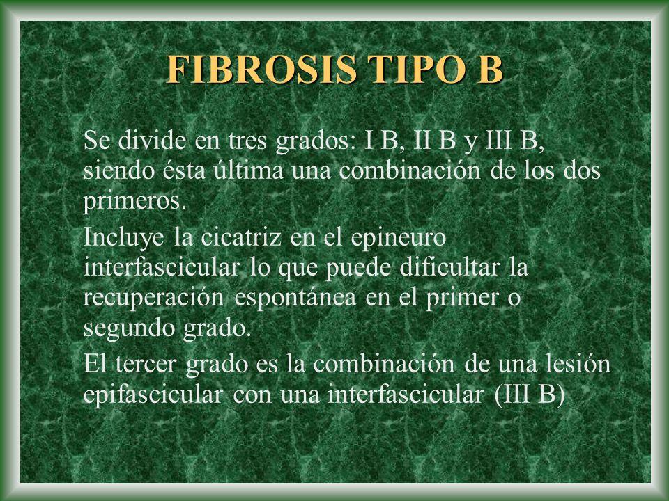 FIBROSIS TIPO B Se divide en tres grados: I B, II B y III B, siendo ésta última una combinación de los dos primeros. Incluye la cicatriz en el epineur