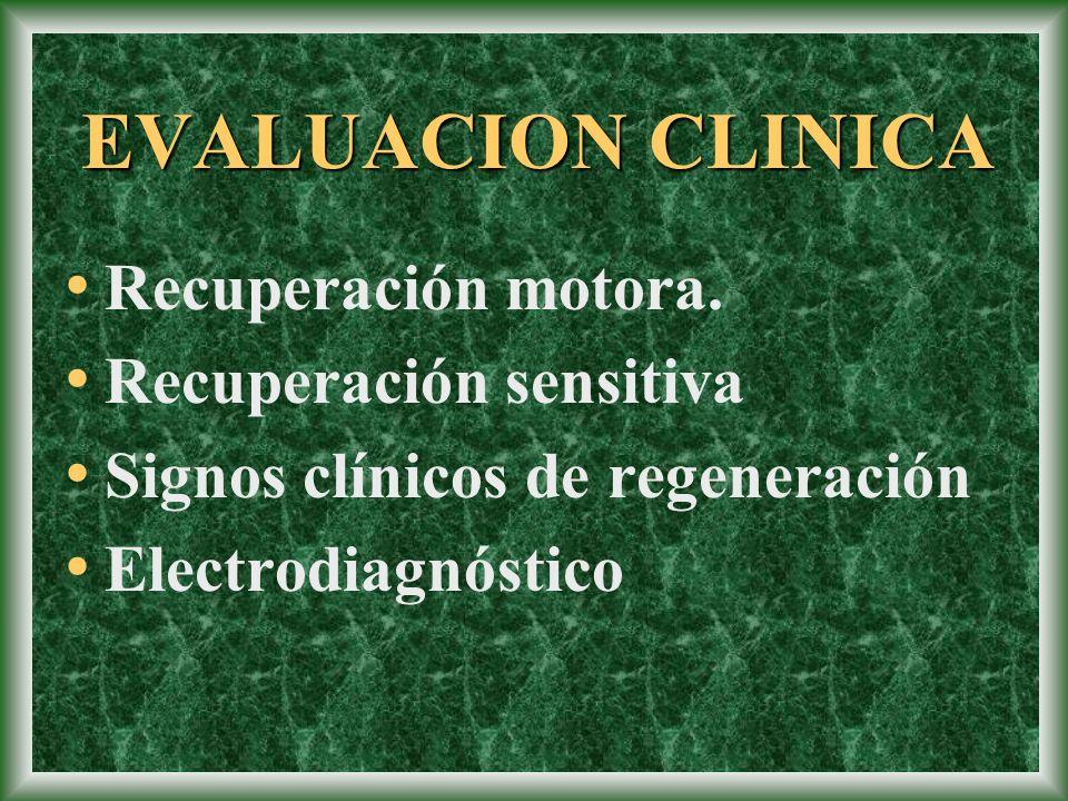 EVALUACION CLINICA Recuperación motora. Recuperación sensitiva Signos clínicos de regeneración Electrodiagnóstico