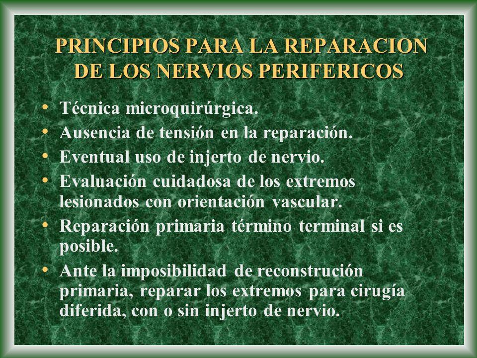 PRINCIPIOS PARA LA REPARACION DE LOS NERVIOS PERIFERICOS PRINCIPIOS PARA LA REPARACION DE LOS NERVIOS PERIFERICOS Técnica microquirúrgica. Ausencia de