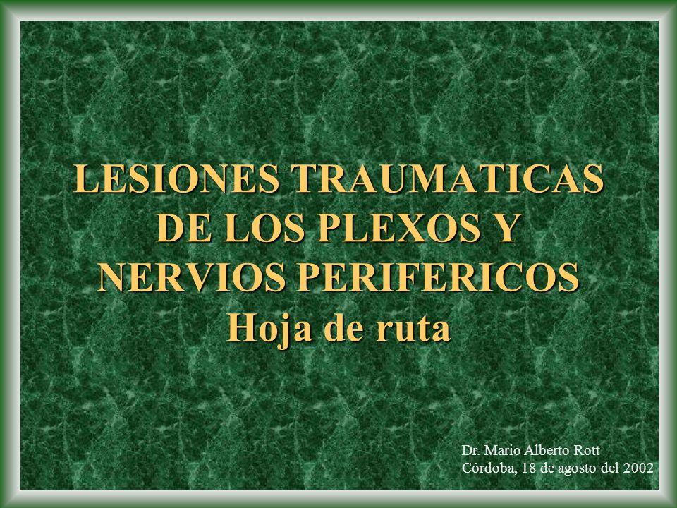 LESIONESTRAUMATICAS DE LOS PLEXOS Y NERVIOS PERIFERICOS Hoja de ruta LESIONES TRAUMATICAS DE LOS PLEXOS Y NERVIOS PERIFERICOS Hoja de ruta Dr. Mario A
