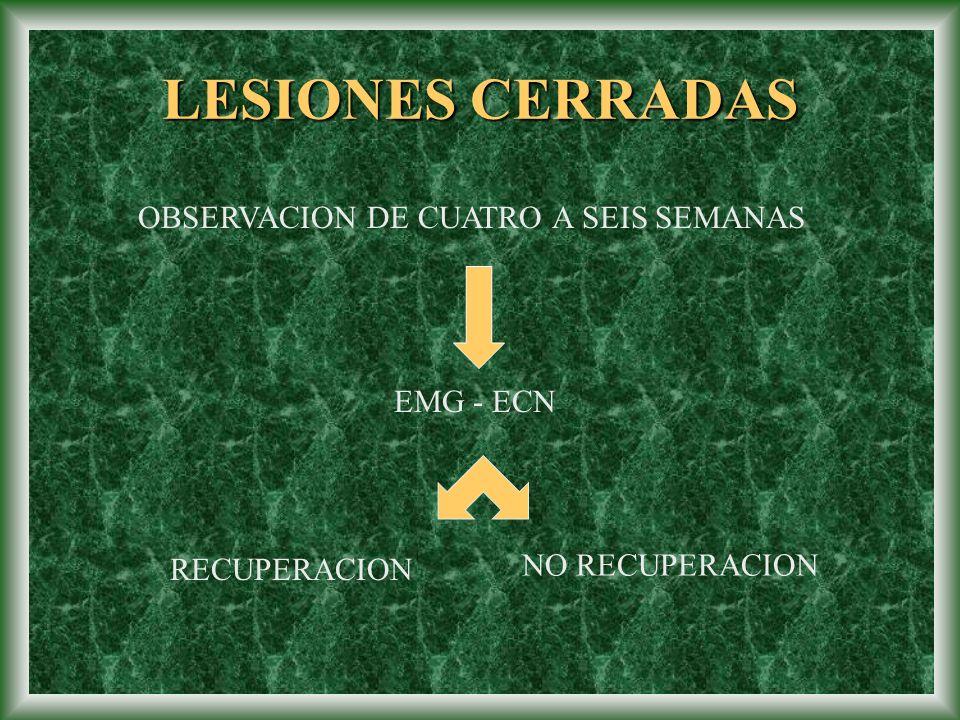 LESIONES CERRADAS OBSERVACION DE CUATRO A SEIS SEMANAS EMG - ECN RECUPERACION NO RECUPERACION