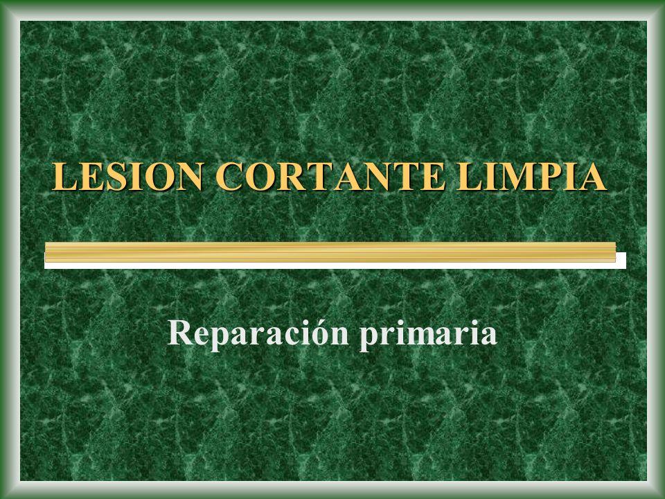 LESION CORTANTE LIMPIA Reparación primaria