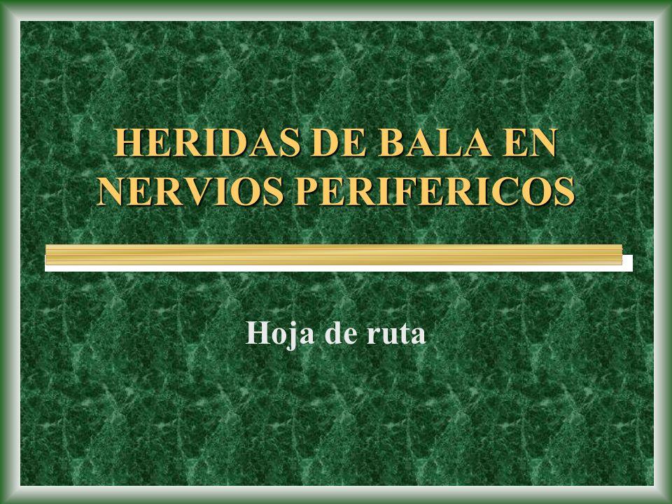 HERIDAS DE BALA EN NERVIOS PERIFERICOS Hoja de ruta
