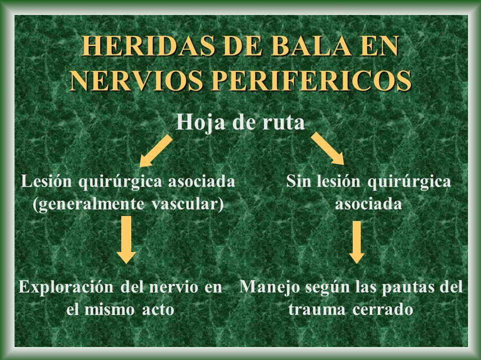 Hoja de ruta Lesión quirúrgica asociada (generalmente vascular) Sin lesión quirúrgica asociada Exploración del nervio en el mismo acto Manejo según la