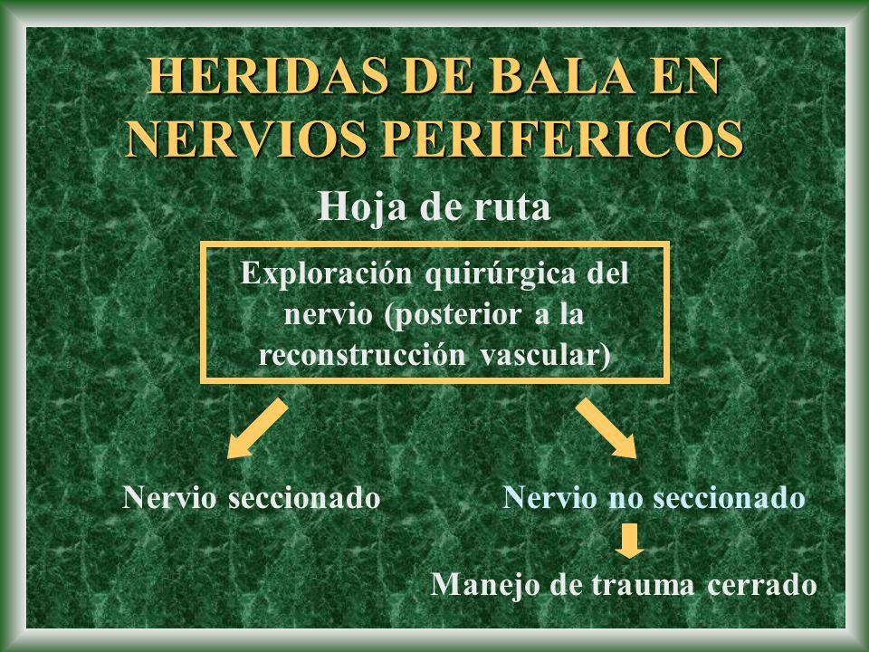 Hoja de ruta Exploración quirúrgica del nervio (posterior a la reconstrucción vascular) Nervio no seccionadoNervio seccionado Manejo de trauma cerrado
