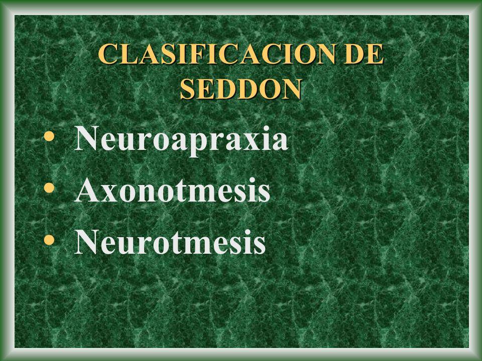 Lesiones por electricidad.Lesiones iatrogénicas por inyecciones: nervio radial y ciático.