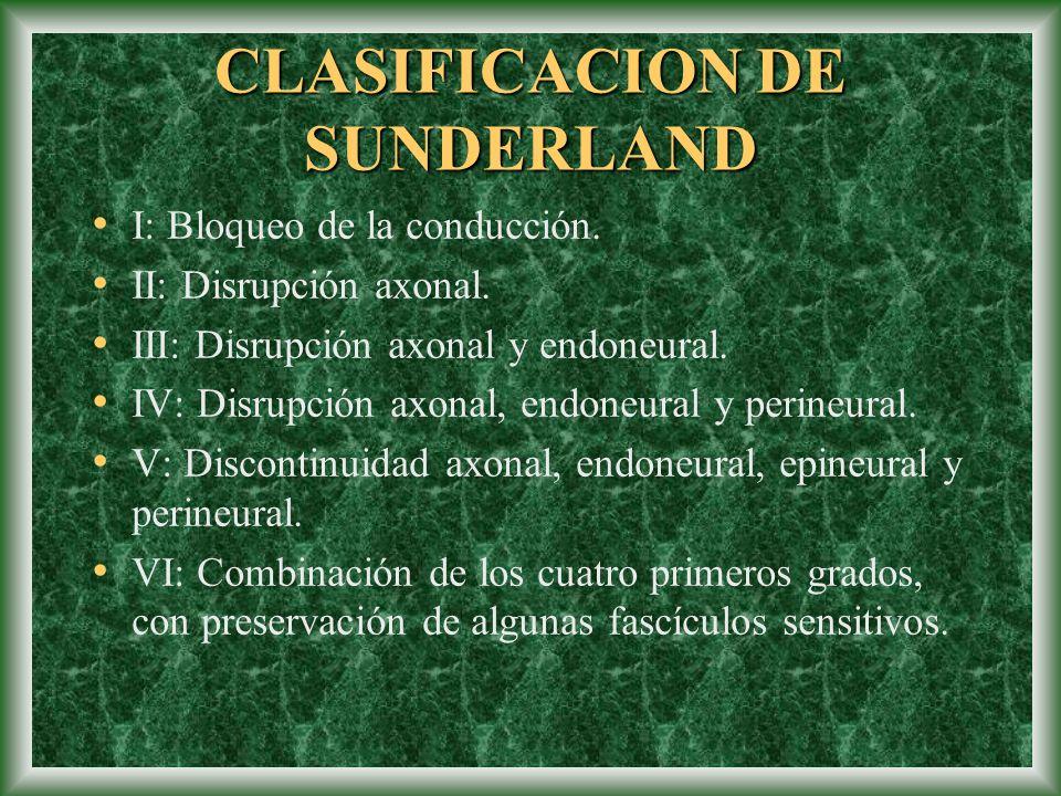 CLASIFICACION DE SUNDERLAND I: Bloqueo de la conducción. II: Disrupción axonal. III: Disrupción axonal y endoneural. IV: Disrupción axonal, endoneural