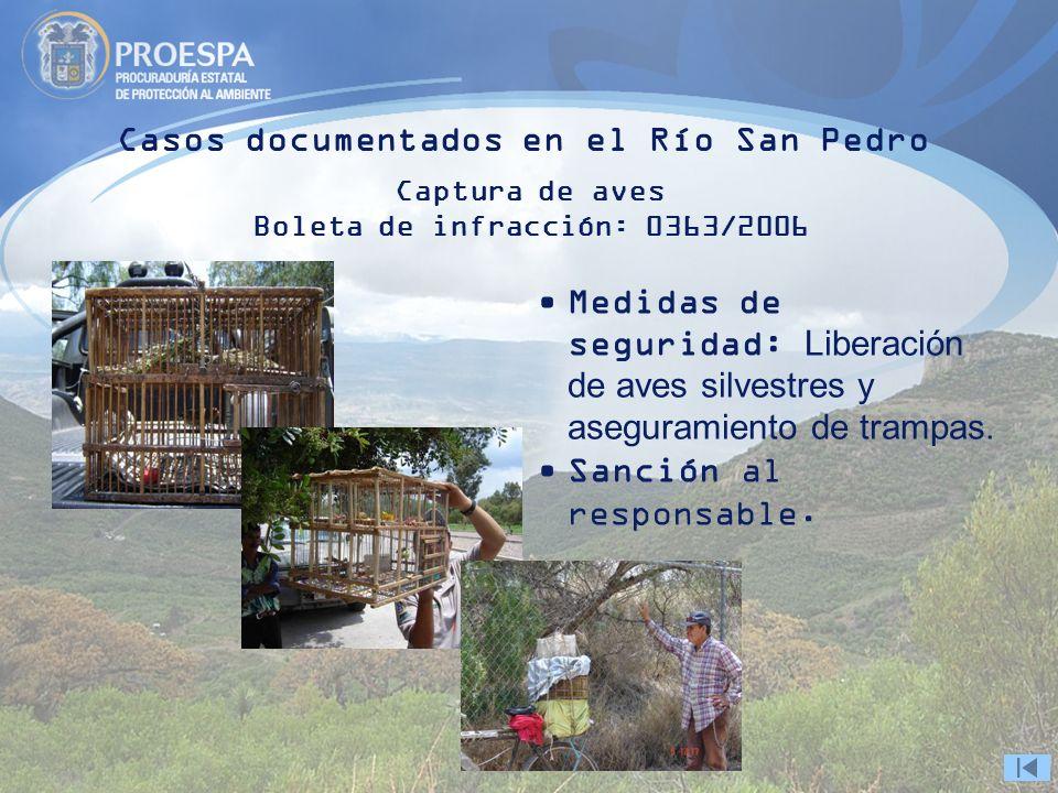 Casos documentados en el Río San Pedro Captura de aves Boleta de infracción: 0363/2006 Medidas de seguridad: Liberación de aves silvestres y aseguramiento de trampas.