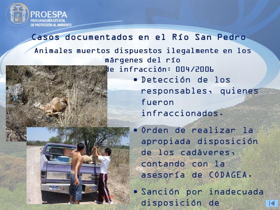 Casos documentados en el Río San Pedro Animales muertos dispuestos ilegalmente en los márgenes del río Boleta de infracción: 004/2006 Detección de los responsables, quienes fueron infraccionados.