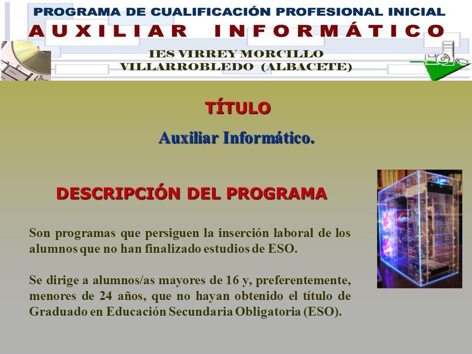Son programas que persiguen la inserción laboral de los alumnos que no han finalizado estudios de ESO.