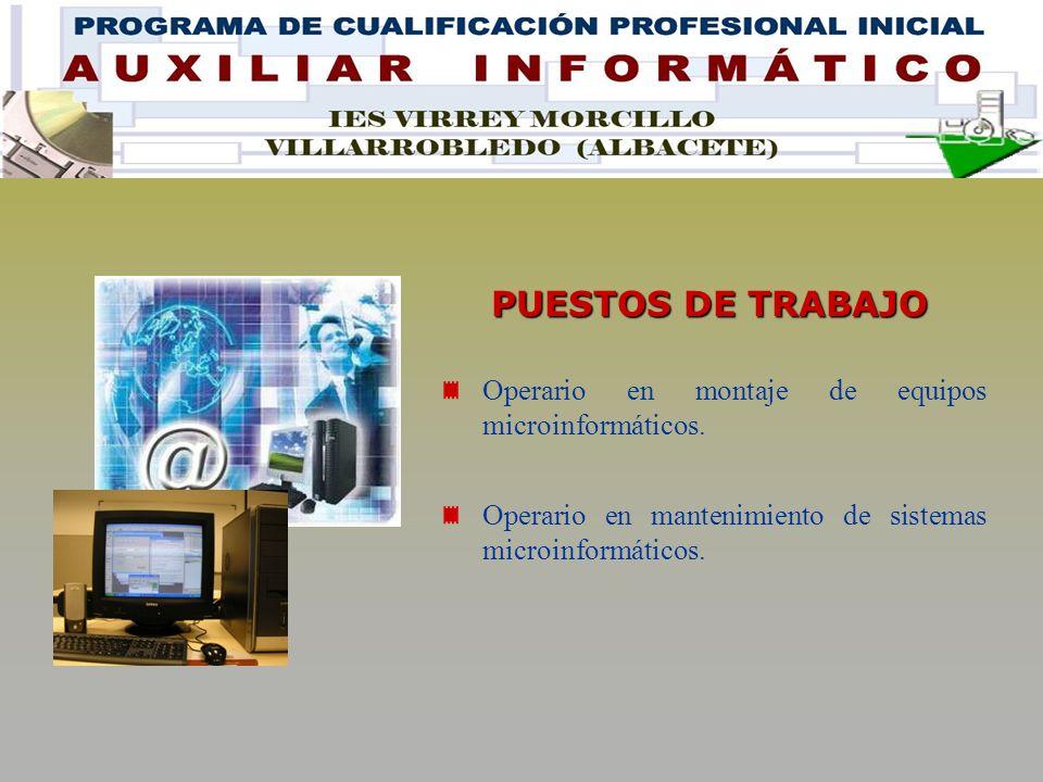 PUESTOS DE TRABAJO Operario en montaje de equipos microinformáticos.