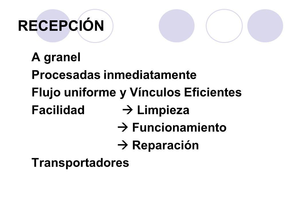 A granel Procesadas inmediatamente Flujo uniforme y Vínculos Eficientes Facilidad Limpieza Funcionamiento Reparación Transportadores